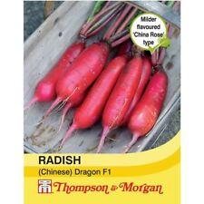 Thompson & Morgan - Vegetables - Radish (Chinese) Dragon F1 Hybrid - 60 Seed