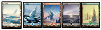 100 Chinese Snow-Covered Full Art Lands (20 Each) MH1 Magic the Gathering MTG