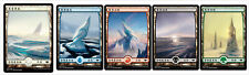 50 Chinese Snow-Covered Full Art Lands (10 Each) MH1 Magic the Gathering MTG