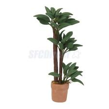 1:12 Brazil Tree Plant w/Ceramic Pot for Dollhouse Home Decor Garden Accs