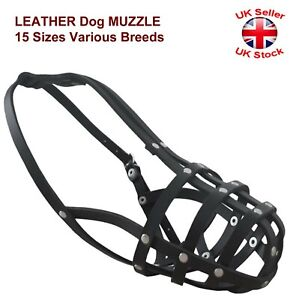 LEATHER Dog MUZZLE 15 Sizes Various Breeds