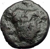 KALLATIS in MOESIA 200BC Authentic Ancient Greek Coin ATHENA CLUB i63740