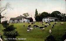 New Barnet. Boys Farm Home in Kromo Series # T 21913.