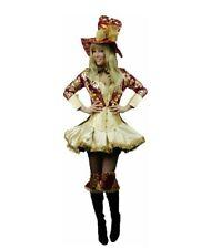 Mad Hatter Alice in Wonderland Fancy Dress Costume Size 20 4XL Ladies Woman BNWT