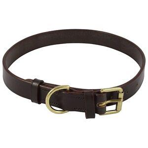 "Audenham Brown 25mm/1"" English Bridle Leather & Polished Brass Dog Collar"