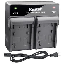 Kastar Battery Rapid Charger for Sony NP-FV50 NP-FV70 NP-FV100 and Sony AC-VQH10