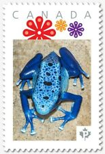 BLUE DART FROG = Personalized Picture Postage stamp MNH Canada 2018 [p18-07s02]