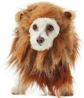 CALIFORNIA COSTUMES KING OF THE JUNGLE LION MANE HEADPIECE PLUSH DOG PET XSMALL