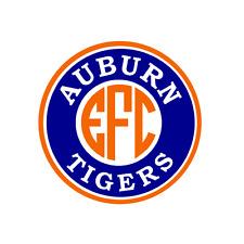 Auburn Tigers Monogram Decal for Yeti, Laptop, Car, Truck, tumbler