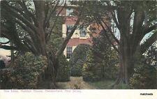 C-1905 Trees Haddon House Haddonfield New Jersey Humpreys undivided postcard
