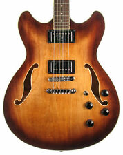 Solid Wood Semi-Hollow Body Right-Handed Electric Guitars
