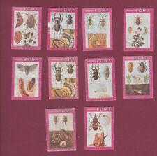 10 étiquettes boites d'allumettes - MATCHBOX LABELS - Insectes