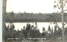 Minnesota, MN, McGregor, Dollard Lake 1940's Real Photo Postcard