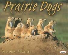 Prairie Dogs (Animal Prey) - Paperback By Markle, Sandra - Good