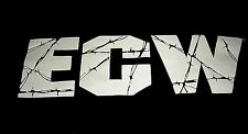 ECW LOGO TEE SHIRT MENS XXL ORIGINAL VINTAGE RARE WRESTLING COLLECTIBLE OLD