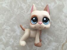 Littlest Pet Shop RARE Great Dane Dog Puppy #1647 Brown Patches Spotted LPS