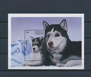 LO55684 Antigua & Barbuda Siberian husky pets dogs good sheet MNH