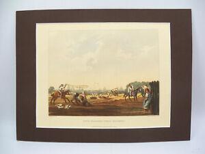 South Matadero (Public Butchery) Buenos Ayres 1820 Aquatint Print by E.E. Vidal