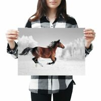 A3 - Galloping Brown Horse Horses Poster 42X29.7cm280gsm #3965