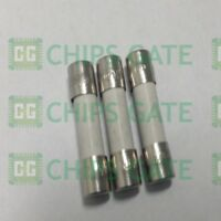 30PCS T1AH250V Ceramic Body Time-Lag Axial Lead Fuse