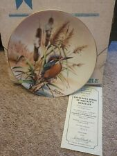 Kingfisher Plate The Hamilton Collection Colourful Birds Of Britains Heritage