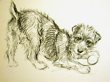 K.F. Barker 1933 Terrier or Mixed Breed Playing w Ball Vintage Dog Print Matted