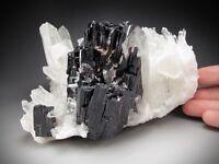 Hübnerite and Quartz Crystals, Pasto Bueno, Peru
