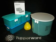 Tupperware AQUA Fridge Smart ~Round 20c 1 ¼ Gallon ~Med Long ~Square FridgeSmart