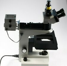 Mikroskop Leitz Wetzlar SM LUX HL Trinokular Labor/Forschungsmikroskop