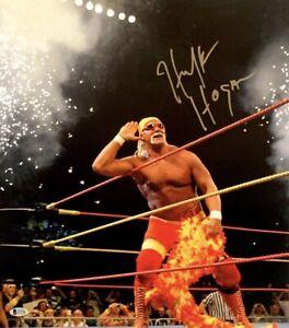 Hulk Hogan Signed HulkaMania 16x20 Photo *WCW *NwO Wrestling BAS I34718