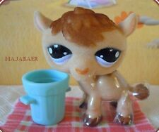 •♥• LITTLEST PET SHOP •♥• KAMEL CAMEL FUZZY #997 •♥• SPECIAL EDITION •♥• NEU RAR