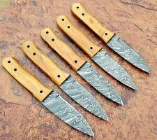 Damascus Steel Custom Handmade 9'' Olive Wood Skinner Knife Lot of 5 Knives
