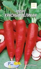 Graines de Radis rouge géant -  Graines Potager Légumes Plantes- 300 graines