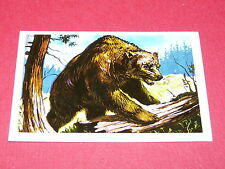 N°63 LE ROI DES OURS CONQUETE DE L'OUEST WILLIAMS 1972 PANINI FAR WEST WESTERN
