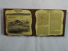 Civil War Relic CSA Elmira Prison wood artifact HELLMIRA