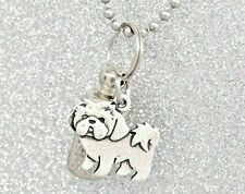 Shih Tzu Ashes Holder Necklace || Memorial Jewelry for Dog Ashes