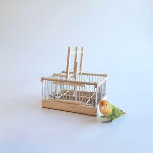 Trap birds // Hunting Escaped bird cage // Catch birds // EXPERT DISARM SYSTEM