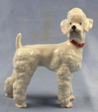 Pudel porzellanfigur Selb germany porzellan figur hund poodle