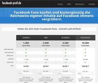 Webprojekt - Einnahmen - Online Shop - Geschäftsverkauf -Facebook