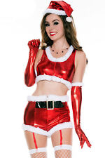 Sexy Women's Hot Santa Babe Costume Christmas Fancy Dress Outfit