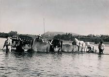 Près ESPOZENDE c. 1950 - Traversée du Rio Cavado Portugal - DIV 3455a