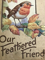 OUR FEATHER FRIENDS 12 Tipped in Plates - Raised Relief Cover ORNITHOLOGY