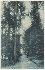VENADORO VENA D'ORO - GRAND HOTEL E IL BOSCO - PONTE NELLE ALPI (BELLUNO) 1912