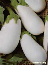 Aubergine *Eisberg* 10 Samen *Zarte weiße Aubergine nicht bitter *Eggplant seeds
