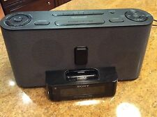 Sony ICF-CS10iP Speaker Dock / Clock Radio for iPod & iPhone (ICF-C1iPMK2)