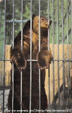 POSTCARD   ANIMALS   CANADA  VANCOUVER  ZOO   Brown  Bear