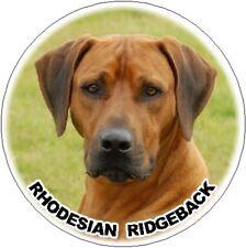 2 Rhodesian Ridgeback Car Stickers By Starprint