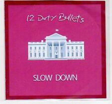 (EF209) 12 Dirty Bullets, Slow Down - DJ CD