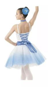 Weissman Blue Ombre Ballet Costume, CM