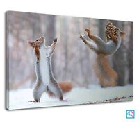 Amazing Squirrel Catches The Pine Nut In Winter Canvas Print Wall Art Picture